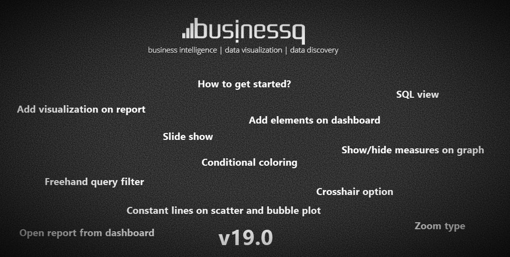 BusinessQ V19.0